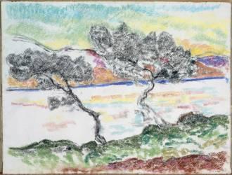 Pins au Cap Martin (Guillaumin Armand) - Muzeo.com