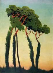 Pins parasols (Vallotton Félix) - Muzeo.com