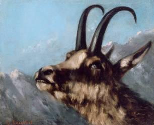 Tête de chamois (Courbet Gustave) - Muzeo.com