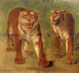 Tigre royal furieux (Rosa Bonheur) - Muzeo.com