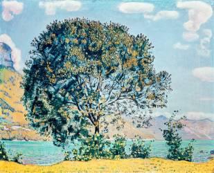 Une Vue du Lac Brienz depuis Bodeli (Ferdinand Hodler) - Muzeo.com