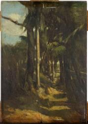 Le Sentier entre les palmiers (Marilhat Prosper) - Muzeo.com