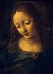 Détail de La Vierge, l'Enfant Jésus, saint Jean-Baptiste et un ange, dite la Vierge aux rochers (Léonard de Vinci) - Muzeo.com
