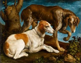 Deux chiens de chasse attachés à une souche (Bassano Jacopo (dit), Jacopo...) - Muzeo.com
