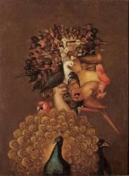 L'Air (Arcimboldo Giuseppe) - Muzeo.com