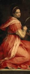 Sainte Catherine d'Alexandrie (Andrea del Sarto ) - Muzeo.com