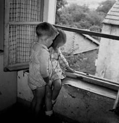 Antony 1953- Les oiseaux en cage !... (Bloncourt Gérald) - Muzeo.com