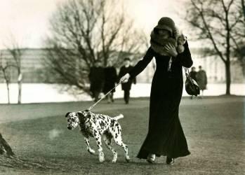 Portrait d''une dame avec un Dalmatien en laisse (Uwe Schaffrath) - Muzeo.com