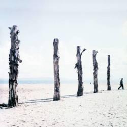 4- ARABE QUI MARCHE (Yoann Cimier) - Muzeo.com