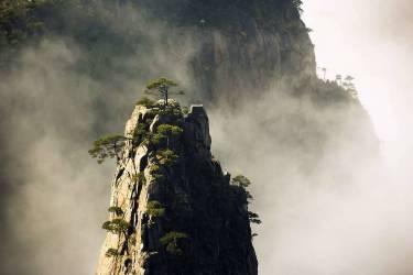 Asie, Chine, Anhui, montagnes de Huangshan, pins de Huangshan, Pinus hwangshanensis, hiver (Lukasseck Frank) - Muzeo.com