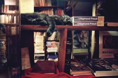 Dreams by Freud (Gudermane Natasha) - Muzeo.com
