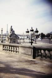 Jardin des Tuileries, côté Jeu de Paume, vue de la place de la Concorde. (Jérome Siran) - Muzeo.com