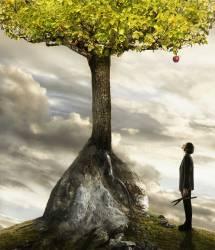 Jeune homme d'affaires levant les yeux vers une pomme dans l'arbre (Colin Anderson) - Muzeo.com