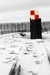 Le petit train – Cap Ferret (Chrystèle Lacène) - Muzeo.com