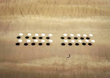 Man Walking Past Beach Umbrellas (Simon Mills) - Muzeo.com