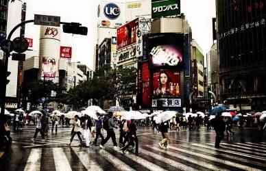 Piétons traversant une intersection très fréquentée sous la pluie, Tokyo, Japon (Anonyme) - Muzeo.com