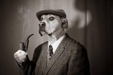 Sherlock Hound reflechissant à sa prochaine affaire (Cynthia Pringle) - Muzeo.com