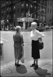 The shop around the corner-NY 83 (Pierre-Anthony Allard) - Muzeo.com