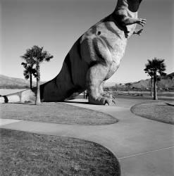 T-Rex (Lee Rich) - Muzeo.com