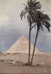 Des palmiers devant l'une des pyramides de Gizeh, Egypte, 1923 (Jules Gervais-Courtellemont) - Muzeo.com