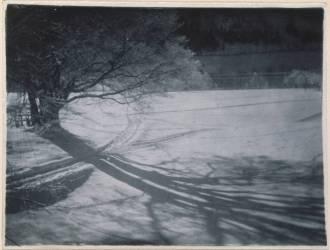 Bois sous la neige, étude d'ombres (Bronia Wistreich-Weill) - Muzeo.com