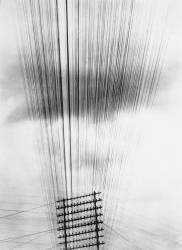 Câbles téléphoniques, Mexico (Tina Modotti) - Muzeo.com