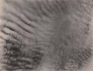 Equivalents (Alfred Stieglitz) - Muzeo.com