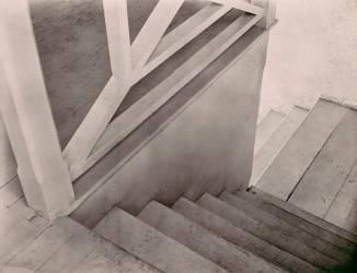 Escaliers, Mexico (Tina Modotti) - Muzeo.com