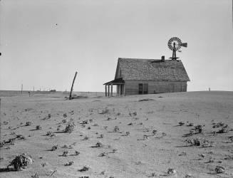 Ferme dans un désert aride au Texas (Dorothea Lange) - Muzeo.com