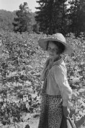 Lucille Burroughs, Hale County, Alabama (Walker Evans) - Muzeo.com