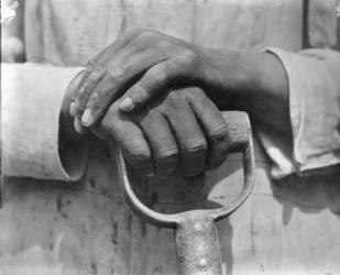 Mains d'un ouvrier, Mexico (Tina Modotti) - Muzeo.com