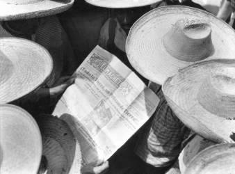 Paysans lisant El Machete, Mexique, 1929 (Tina Modotti) - Muzeo.com
