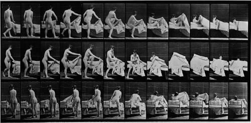 Album sur la décomposition du mouvement: femme nue se couchant (Eadweard Muybridge) - Muzeo.com