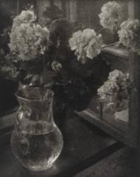 Carafe avec Fleurs (Heinrich Kühn) - Muzeo.com