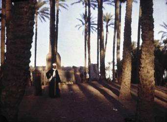 Egypte (Helen Messinger Murdoch) - Muzeo.com