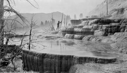 Mammoth Hot Springs dans le parc national de Yellowstone (William Henry Jackson) - Muzeo.com
