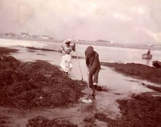 Des touristes pêchant la crevette dans les années 1890 (Anonyme) - Muzeo.com