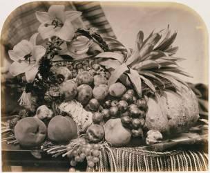 Nature Morte avec Fruits (Roger Fenton) - Muzeo.com