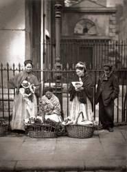 Vendeuse de Fleurs à Covent Garden (John Thomson) - Muzeo.com