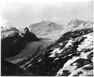 Vue du Mont Rose (Adolphe Braun) - Muzeo.com