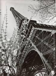 La tour Eiffel vue d'en bas (Paul Joseph Albert Chevojon) - Muzeo.com
