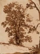 Etude de paysage : étude d'arbres (Nicolas Poussin) - Muzeo.com