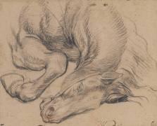 Etude partielle d'un cheval (Charles Le Brun) - Muzeo.com