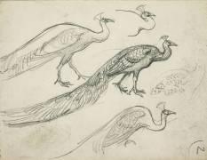 Paons de profil (Eugène Grasset) - Muzeo.com