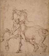 Homme nu tenant un cheval cabré (Dürer Albrecht) - Muzeo.com
