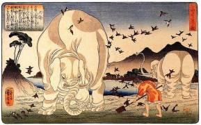 Thaishun avec les éléphants (Utagawa Kuniyoshi) - Muzeo.com