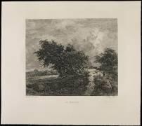 Le Buisson (Daubigny Charles-François) - Muzeo.com
