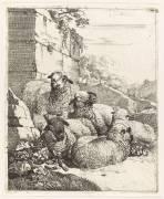 Différents animaux (Roos Johann Henrich) - Muzeo.com