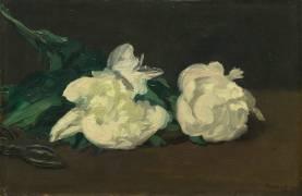 Branche de pivoines blanches et sécateur (Manet Edouard) - Muzeo.com
