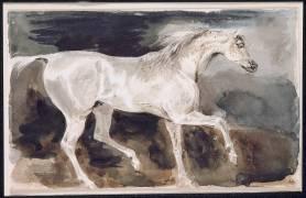 Cheval blanc trottant de profil à droite (Delacroix Eugène) - Muzeo.com
